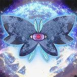 Moonlit Papillon