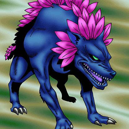 Flower-wolf-yo_0487